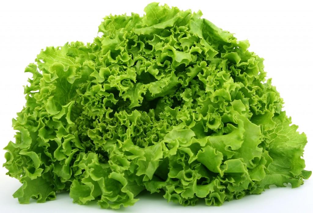lettuce00