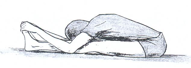 shafa-patsi